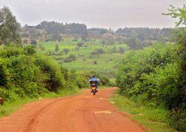 7 scaling criteria as Nuru Kenya enters unknown territory