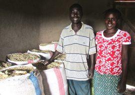 Farmers profit from selling maize through Nuru Kenya Market Linkage Program