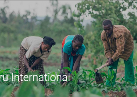 Nuru International featured on Google for Nonprofits