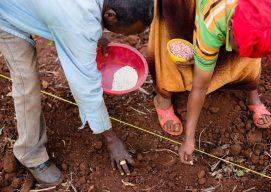 Nuru Nigeria Applies Innovative Resilience Capacities Index