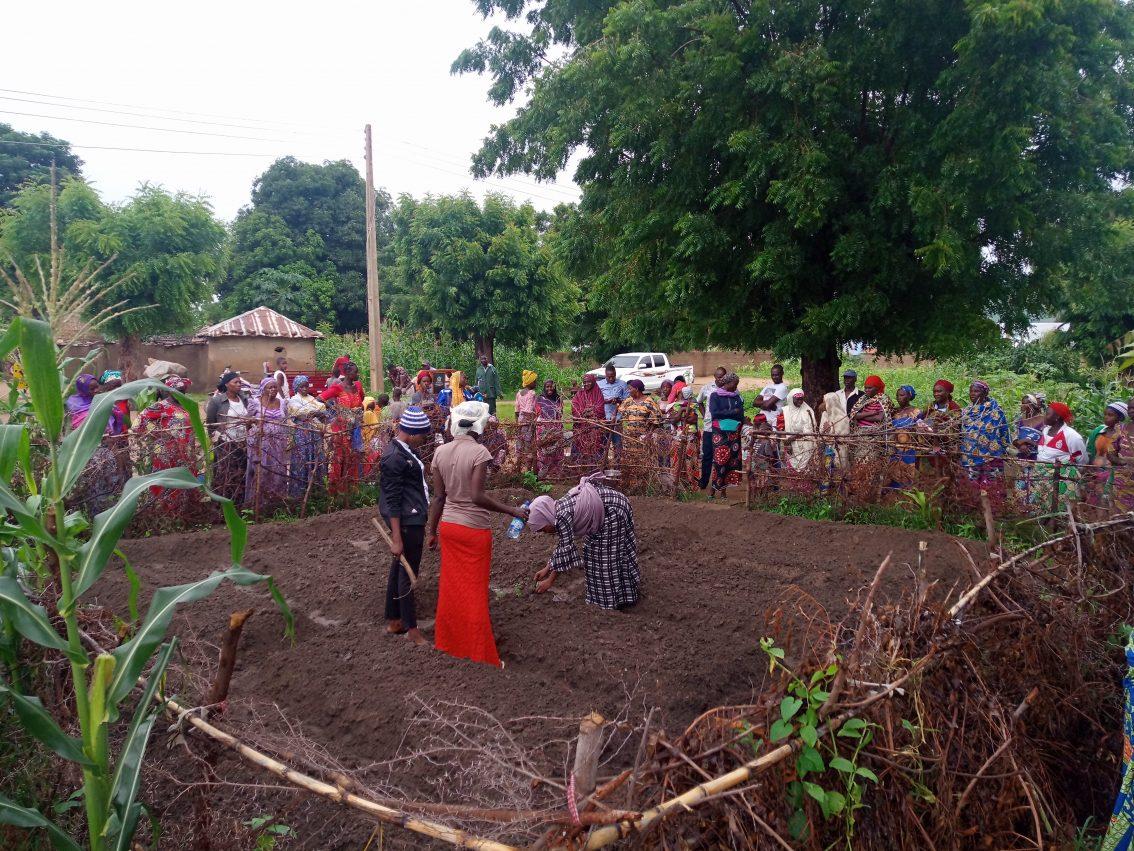 Nuru Nigeria: Cultivating Resilience Through Permagardens