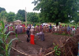 Nuru Nigeria: Cultivating Resilience Through Permagardens