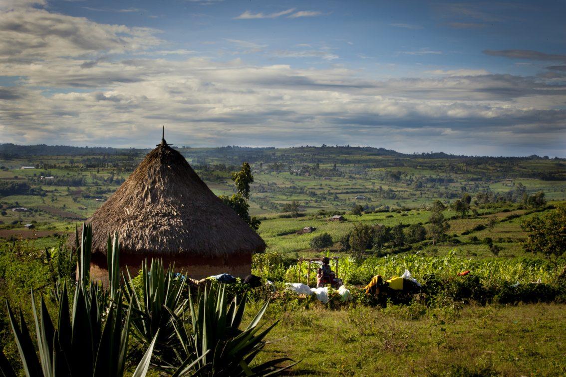 COVID-19, Food Security in Sub-Saharan Africa, and Nuru's Response