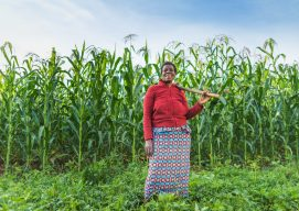 Nuru's Digital Development Strategy and the AMEA AgTech Guide