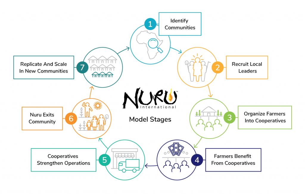graphic of Nuru's model