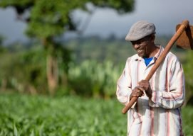 The Transformative Impact of Farmer Organizations in Ethiopia